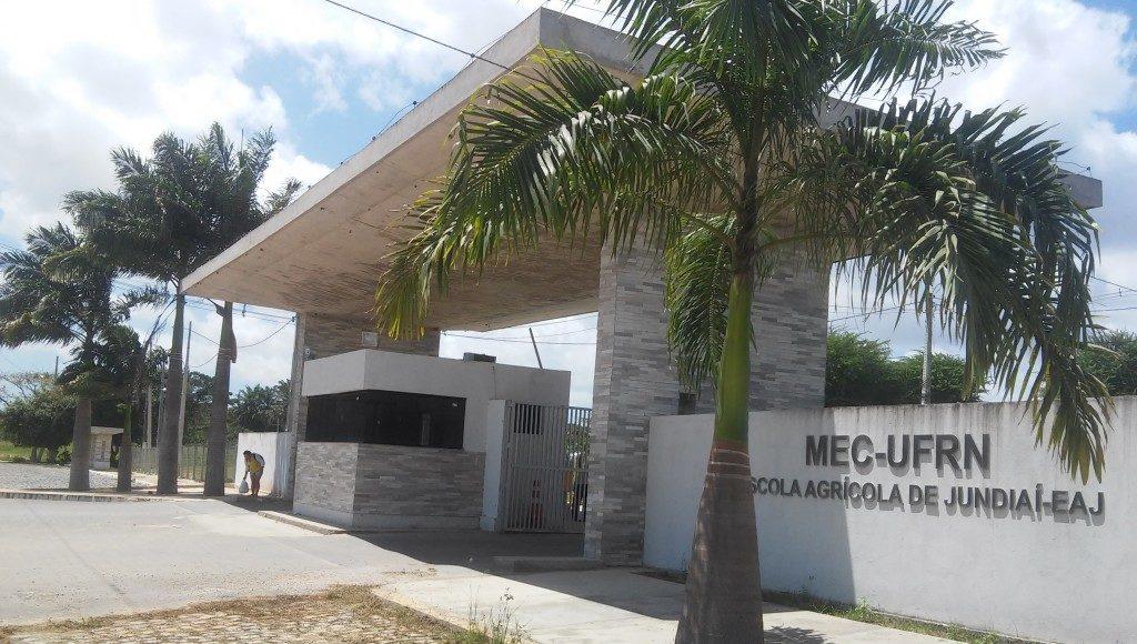 Foto: Macaíba no Ar